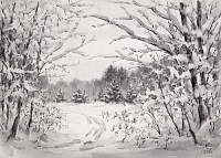 Вечер. Зимний лес. графика