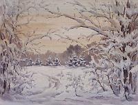 Вечер. Зимний лес.